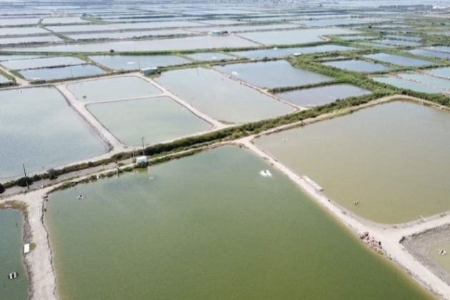 推台南漁電共生 台鹽綠能:年發電量可比2.37座曾文水庫