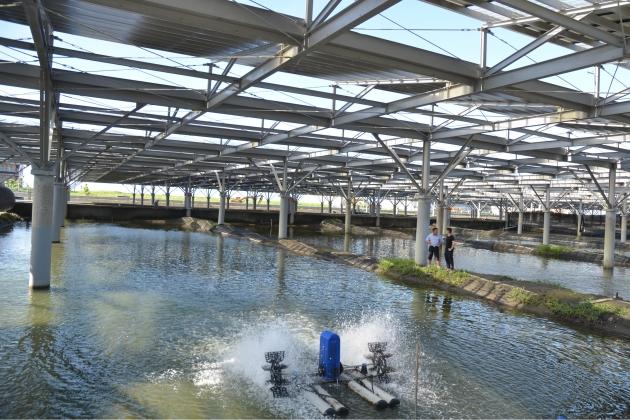 漁電共生拚綠能 台南4案原則通過